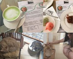 Collage of Neko Cafe by Marie