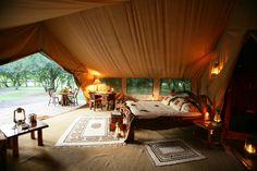 Governor's Il Moran Camp -- Luxury safari lodge in Kenya, Masai Mara New Travel, Luxury Travel, Hotels And Resorts, Best Hotels, Trek The Himalayas, Virgin Holidays, African Holidays, Safari Holidays, Game Lodge