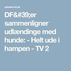 DF'er sammenligner udlændinge med hunde: - Helt ude i hampen - TV 2