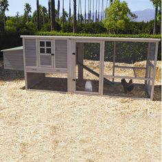 Precision Pet Products Extreme Hen House Chicken Coop with Nesting Box, Ramp and Roosting Bar