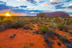 Sunrise at Uluru in Central Australia