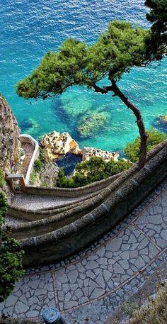 Path to the Sea, Isle of Capri, Italy - Italia - Isola di Capri - Sentiero sul mare Dream Vacations, Vacation Spots, Italy Vacation, Vacation Packages, Vacation Ideas, Jamaica Vacation, Places To Travel, Places To See, Travel Destinations