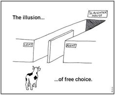 The illusion of choice, yielding the same result. Yes you are the Cow (Sheep) and the Government is the illusion. And I remember when I turned 18 and thought my vote really made difference. Illuminati, Two Party System, Thought Provoking, Laughter, Funny Pictures, Funny Pics, Funny Images, Mindfulness, This Or That Questions