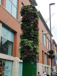 Fixed Living Walls - Urban Planters Urban Planters, Living Walls, Live Plants, Wall Spaces, Indoor, Green, Design, Interior, Plant Wall