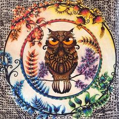 Image result for enchanted forest owl coloring