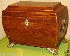 Regency Period Sarcophagus 2 Compartment Tea Caddy Wood & Brass Bone Escutcheon