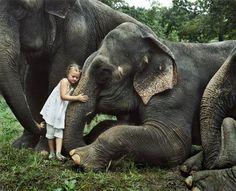 #trunksniff #robinschwartz #ameliasworld