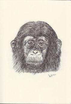 BALLPEN MONKEY 7 Ballpen, Ballpoint Pen, Monkeys, Illustrator, Saatchi Art, Drawings, Rompers, Monkey, Illustrators