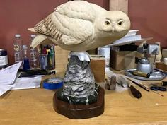 Chainsaw Carvings, Wood Carvings, Stone Carving, Decoy Carving, Whittling Wood, Sticks And Stones, Snowy Owl, Wood Sculpture, Taxidermy