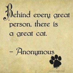 behind every great person, there is a great cat