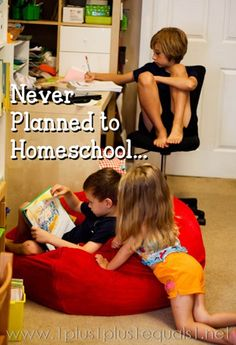 We Never Planned to Homeschool http://www.1plus1plus1equals1.net/2013/07/never-planned-to-homeschool/ #HTHomeschool #WhyHomeschool
