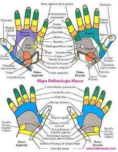 A Primer on Acupuncture Health And Beauty Tips, Health Advice, Health And Wellness, Health Fitness, Massage Wellness, Reflexology Massage, Massage Oil, Mudras, Pressure Points