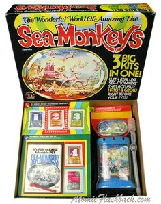Sea monkeys. Every kid must have had some of these. What the hell are they anyway ?