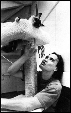 Photo of Brandon Lee R.P for fans of Brandon Lee 1275475 Brandon Lee, Bruce Lee, Crazy Cat Lady, Crazy Cats, Siamese Cats, Cats And Kittens, I Love Cats, Cool Cats, Celebrities With Cats