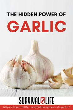 It's National Garlic Day! One of the most popular ingredients for home health is garlic, and for good reason. You can count on this stuff as a natural remedy that you know will actually work. Check this out for more! #NationalGarlicDay #garlic #garlichealthbenefits #homeremedy #naturalremedy #survival #preparedness #survivallife Survival Hacks, Survival Life, Emergency Preparedness, Survival Skills, Garlic Health Benefits, Home Health, Alternative Health, Natural Home Remedies, Herbal Medicine