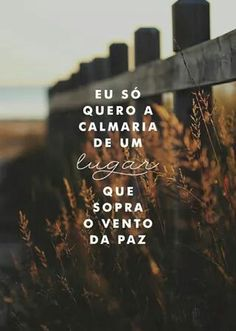 #calmaria #paz
