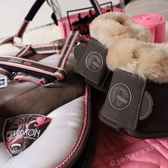 Learn Equestrian Photography and How to Get Better Photographs of Horses Horse Boots, Horse Gear, Equestrian Outfits, Equestrian Style, Horse Riding Clothes, Riding Boots, English Horse Tack, Equestrian Supplies, Horse Fashion