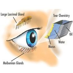 Herbal Remedies For Dry Eyes - Natural Treatments & Cure For Dry Eyes | Home Remedies, Natural Remedy