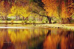 #Asheville North Carolina mountain pond #photography by Gray Artus