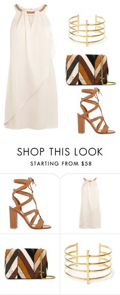 """""""Untitled #1367"""" by twil24 ❤ liked on Polyvore featuring Gianvito Rossi, Coast, Jérôme Dreyfuss and BauXo"""