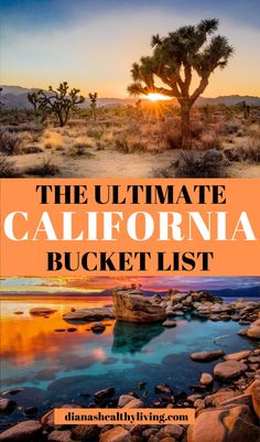 Discover the top things to do in California from cycling the Golden Gate Bridge to driving the Pacific Coast Highway. Visit beaches, forests and deserts