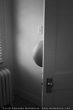 pregnant belly from behind a door