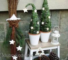 miniature potted Christmas tree idea. Loose branches stuck into pot..wired tight and shaped..decorate with lites or small ornaments ..paint pots and use everywhere.. would be cute at wedding too.