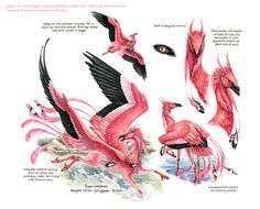 Custom Aequis: Flamingo by pallanoph.deviant … on - Character Design Club 2019 Mythical Creatures Art, Alien Creatures, Mythological Creatures, Magical Creatures, Creature Drawings, Animal Drawings, Creature Feature, Creature Design, Fantasy Beasts