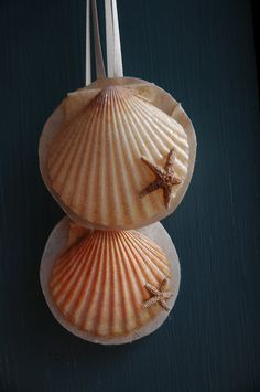 Sea shell ornament.