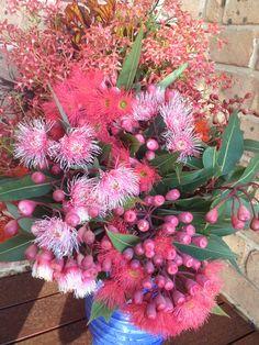 Australian native flowers from the farm