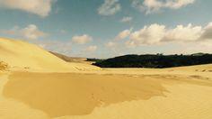 GIANT#TePaki#Sand#Dunes Dune, New Zealand, Beach, Water, Travel, Outdoor, Water Water, Outdoors, Aqua