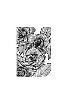 A perfect flower tattoo design and beautiful print. Delicate Botanical Rose Illustration Print // by StaggIllustration