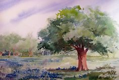 Live Oak Tree and Bluebonnets Watercolor Painting by RoseAnnHayes