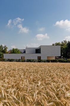 VAWE House  Affligem, Belgium     A project by: Areal Architecten