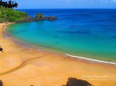 Best Beaches in the World - Travelers' Choice Awards - TripAdvisor