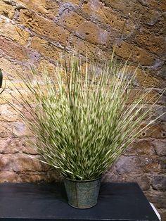 Fabulous fake zebra grass @fakeitflowers
