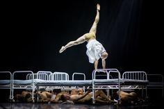 A TEREM - Győri Balett