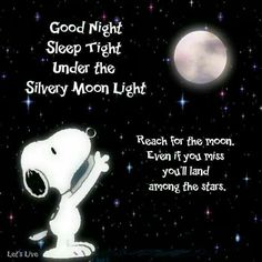 Snoopy Night wishes