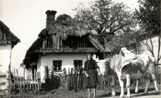 A ház előtt. Kerkafalva. Central Europe, Folk Music, Bratislava, Budapest Hungary, Old Photos, Retro Vintage, Old Things, 1, Marvel