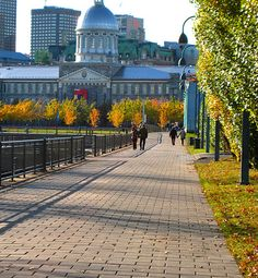 Montreal Montreal Ville, Montreal Canada, Parcs, Great Places, Alaska, North America, Places To Visit, Photos, Dreams
