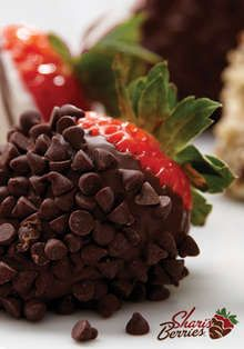 chocolate covered strawberries rolled in mini chocolate chips