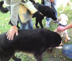 21/09/2015 - Torino con Peja e Elvis