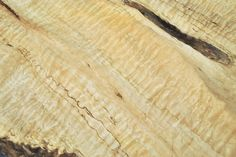 Big Leaf Maple Flitch C1077-C1087: Awesome figure and color variation, even a bit of spalt! ~ Hearne Hardwoods Inc.