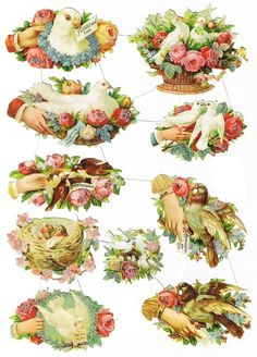 Old victorian Scraps. flowers, doves, nest, hands