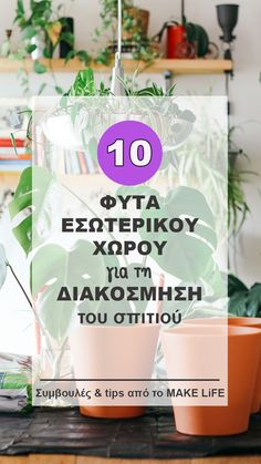 Interior Plants, House Colors, Indoor Plants, Diy And Crafts, Beautiful Places, Sweet Home, Greek, Home And Garden, Diy Projects