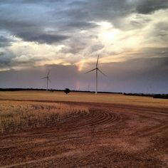 Gorgeous photo of Collgar Wind Farm, spotted on Twitter (photographer Michael Winslade)