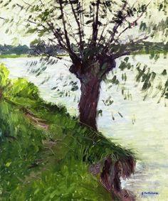 Gustave Caillebotte - Saule au bord de Seine