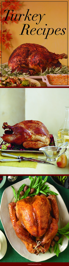 Turkey Recipes | Martha Stewart Living
