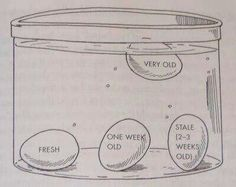 "A way to tell how fresh (or old) your eggs are...might make a neat science fair exhibit if you can figure out ""why""."
