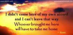 I didn't come here of my own accord and I can't leave thy way. Whoever brought me here will have to take me home. ~ Rumi